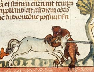 unicornbears